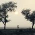 Landscape. Photo © Curt Carnemark / World Bank